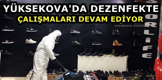 Yüksekova'da Dezenfekte Çalışmaları Devam Ediyor