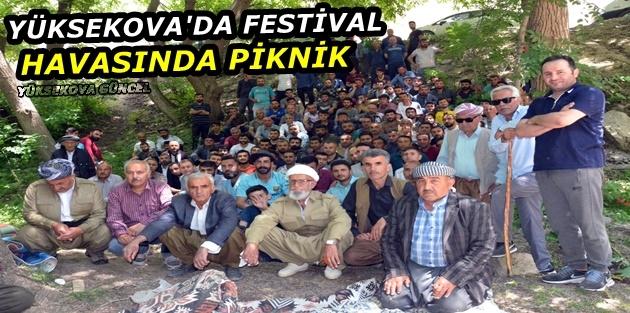 Yüksekova'da Festival havasında piknik