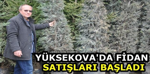 Yüksekova'da Fidan Satışları Başladı