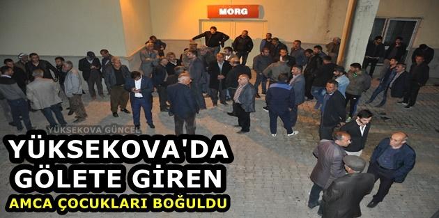 Yüksekova'da Gölete Giren Amca Çocukları Boğuldu