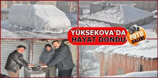 Yüksekova'da hayat dondu