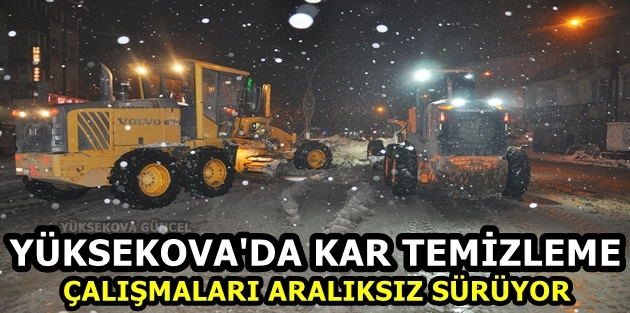 Yüksekova'da Kar Temizleme Çalışmaları Aralıksız Sürüyor