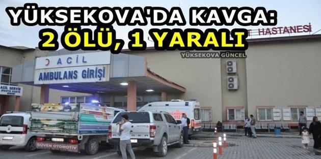 Yüksekova'da Kavga: 2 Ölü, 1 Yaralı