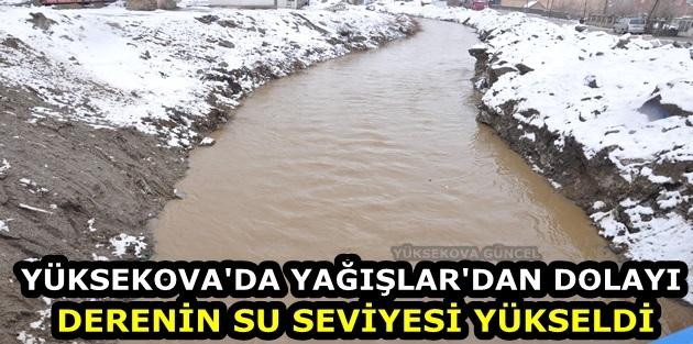 Yüksekova'da yağışlar'dan Dolayı Derenin Su Seviyesi Yükseldi