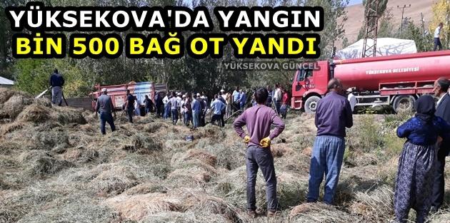 Yüksekova'da Yangın: Bin 500 Bağ Ot Yandı