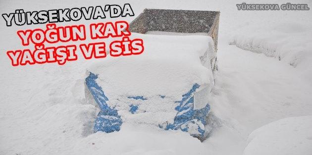 Yüksekova'da Yoğun Kar Yağışı Ve Sis