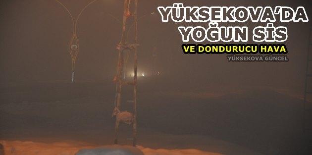 Yüksekova'da Yoğun Sis Ve Dondurucu Hava