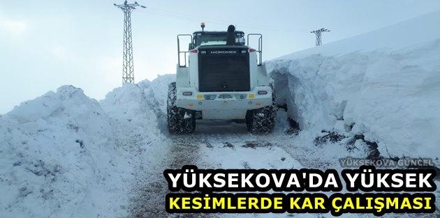 Yüksekova'da Yüksek Kesimlerde Kar çalışması