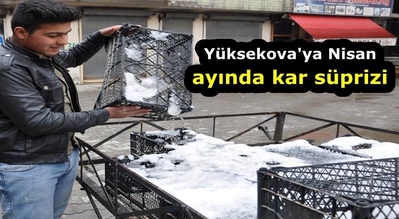 Yüksekova'ya Nisan ayında kar süprizi