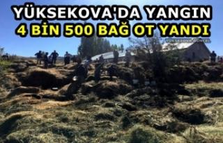 Yüksekova'da Yangın: 4 Bin 500 Bağ Ot Yandı