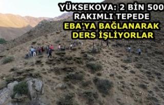 Yüksekova: 2 Bin 500 Rakımlı Tepede Eba'ya...