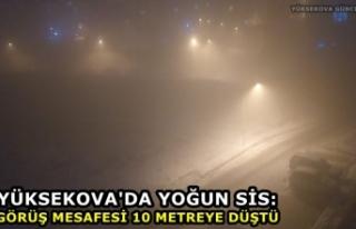 Yüksekova'da yoğun sis: Görüş mesafesi 10...