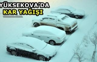 Yüksekova'da kar kalınlığı 10 santimetreyi...
