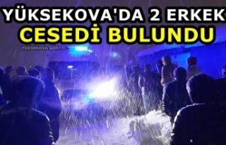 Yüksekova'da 2 Erkek Cesedi Bulundu