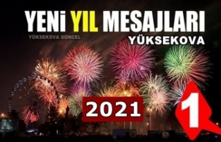 Yüksekova yeni yıl mesajları (1) - 2021