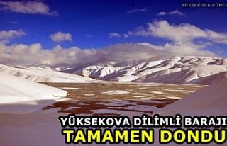 Yüksekova Dilimli Barajı tamamen dondu