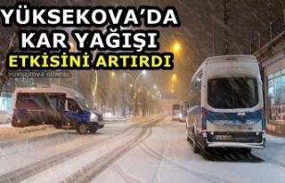 Yüksekova'da kar yağışı etkisini artırdı