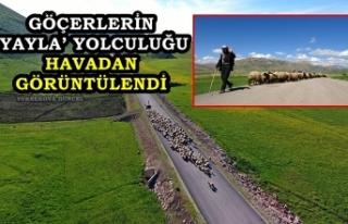 Yüksekova'da Göçerlerin 'Yayla' Yolculuğu...
