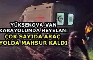 Yüksekova-Van Karayolunda Heyelan: Çok Sayıda Araç...