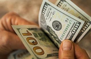 Dolar tarihi zirveyi gördü