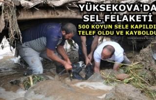Yüksekova'da Sel Felaketi: 500 Koyun Sele Kapıldı,...