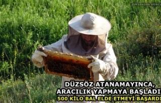 Yüksekovalı Düzsöz Atanamayınca, Arıcılık...