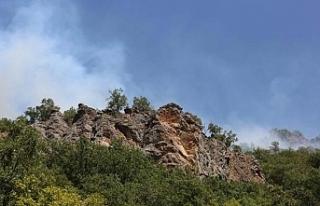 Munzur Vadisi Milli Parkı'ndaki yangın yeniden...