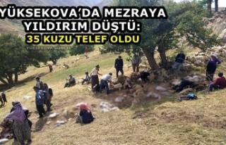 Yüksekova'da Mezraya Yıldırım Düştü: 35 Kuzu...