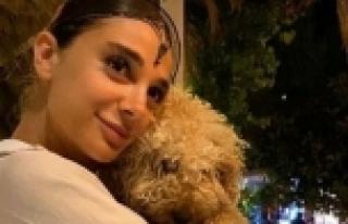5 gündür aranan Pınar Gültekin ölü bulundu