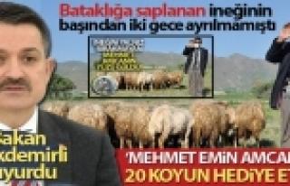 """Bakan Pakdemirli Haberimize Sessiz Kalmadı: """"Mehmet..."""