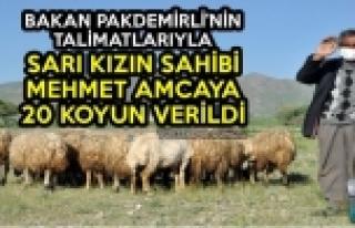 Bakan Pakdemirli'nin Talimatlarıyla Sarı Kızın...