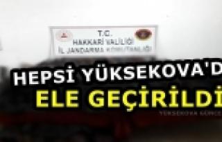 Hepsi Yüksekova'da Ele Geçirildi