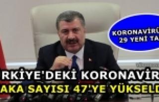 Türkiye'deki koronavirüs vaka sayısı 47'ye yükseldi