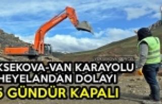 Yüksekova-Van Karayolu Heyelandan Dolayı 5 Gündür...