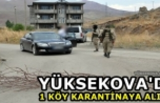 Yüksekova'da 1 Köy Karantinaya Alındı