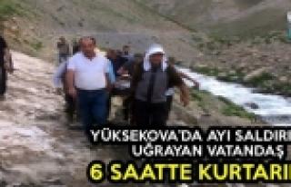 Yüksekova'da Ayı Saldırısına Uğrayan Vatandaş,...