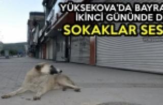 Yüksekova'da Bayramın İkinci Gününde De Sokaklar...