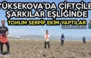 Yüksekova'da Çiftçiler Şarkılar Eşliğinde Tohum...