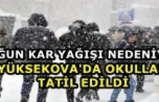 Yüksekova'da Taşımalı Eğitime Kar Engeli