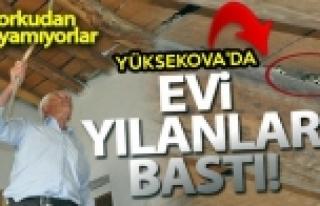 Yüksekova'da Evi Yılanlar Basınca, Evlerini Terk...
