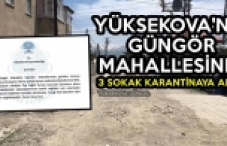 Yüksekova'da Güngör Mahallesinde 3 Sokak Karantinaya...