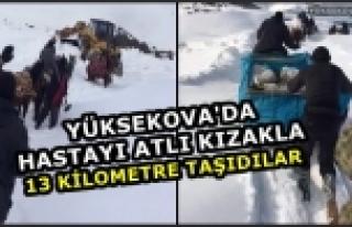 Yüksekova'da Hastayı Atlı Kızakla 13 Kilometre...