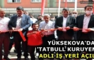 Yüksekova'da 'Tatbull Kuruyemiş' Adlı İş Yeri...