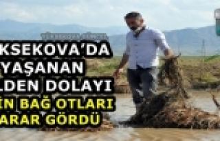 Yüksekova'da Yaşanan Selden Dolayı 3 Bin Bağ...