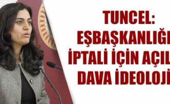 Tuncel: Eşbaşkanlığın iptali için açılan dava ideolojik