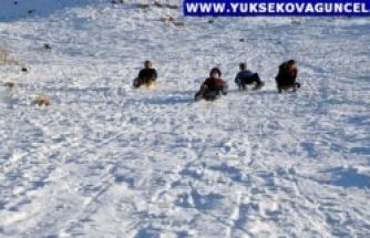Yüksekovalı Çocukların Karlı Tepelerde Kızak Keyfi