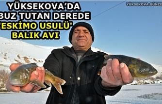 Yüksekova'da Buz Tutan Derede 'Eskimo Usulü' Balık Avı