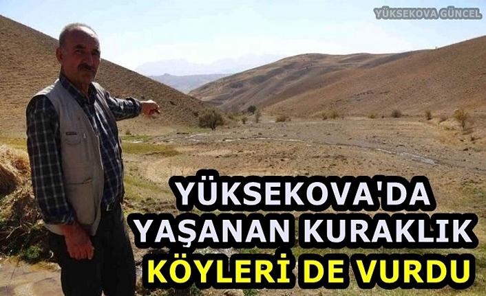 Yüksekova'da yaşanan kuraklık köyleri de vurdu