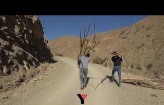 Yüksekova: Odunları sırtlarında 5 kilometre taşıyarak köylerine götürüyorlar
