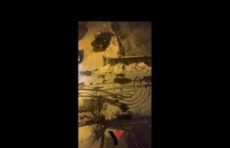 Yüksekova'da 6 gündür aranan kurt, boş sokakta gezerken görüntülendi